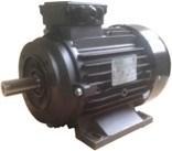 Ravel  H100 HP 6.1 4P B34 MA Kw4,4 4P - электродвигатель для помпы высокого давления - фото 15594