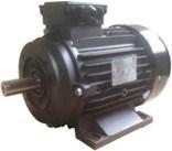 Ravel H112 HP 7.5 4P MA AC KW 5,5 4P - электродвигатель для помпы высокого давления - фото 15595